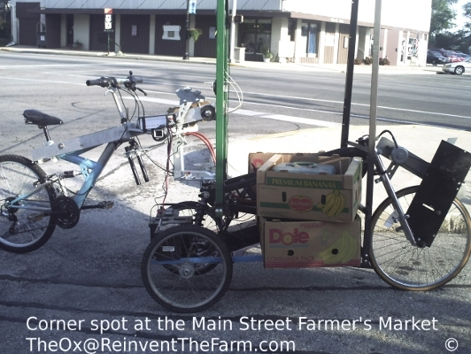 At the Farmer's Market with Hybrid human and solar electric cart